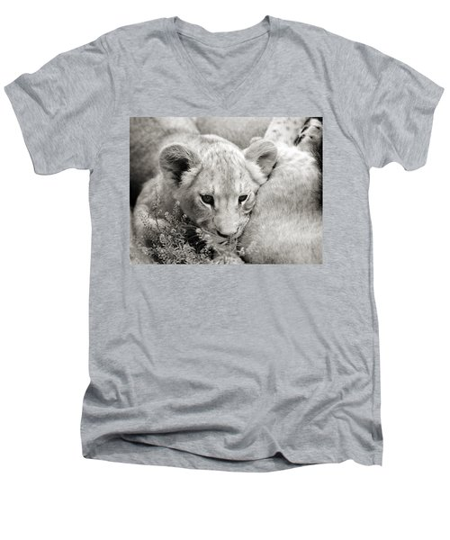 Lion Cub Men's V-Neck T-Shirt