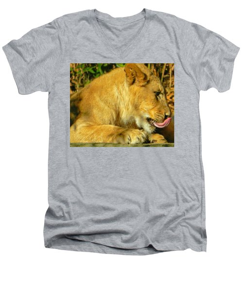 Lion Cub - What A Yummy Snack Men's V-Neck T-Shirt by Emmy Marie Vickers