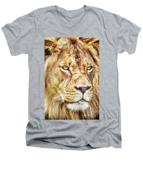Lion-the King Of The Jungle Large Canvas Art, Canvas Print, Large Art, Large Wall Decor, Home Decor Men's V-Neck T-Shirt by David Millenheft