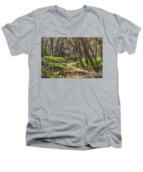 Men's V-Neck T-Shirt featuring the photograph Lion Trail At Hassayampa Nature Reserve by Anne Rodkin