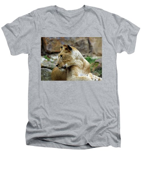 Lioness Men's V-Neck T-Shirt by Inspirational Photo Creations Audrey Woods