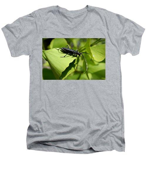 Little Beetle Men's V-Neck T-Shirt