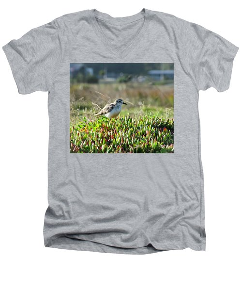 Little Bird Men's V-Neck T-Shirt