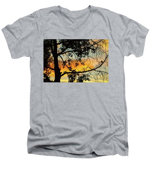 Men's V-Neck T-Shirt featuring the photograph Little Birdie Told Me So by James BO Insogna