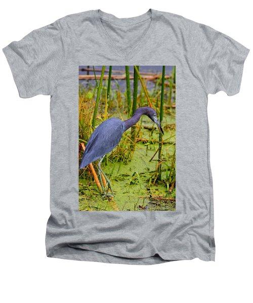 Little Blue Heron Feeding Men's V-Neck T-Shirt