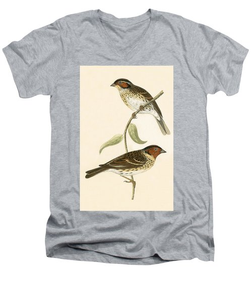 Little Bunting Men's V-Neck T-Shirt