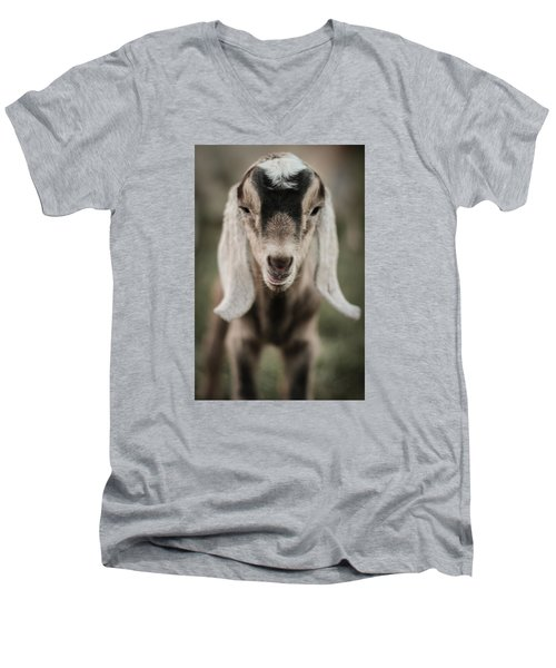 Little Goat In Color Men's V-Neck T-Shirt
