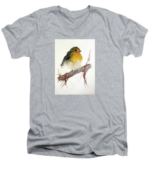 Little Men's V-Neck T-Shirt