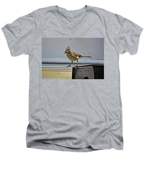 Little Mother Men's V-Neck T-Shirt
