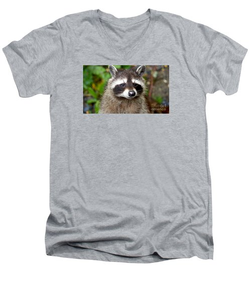 Little Racoon - Procyon Lotor Men's V-Neck T-Shirt