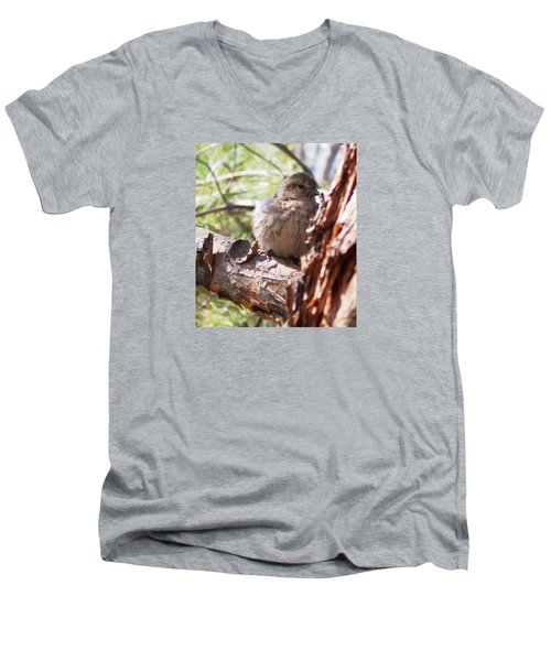 Little Shy Men's V-Neck T-Shirt by Marika Evanson
