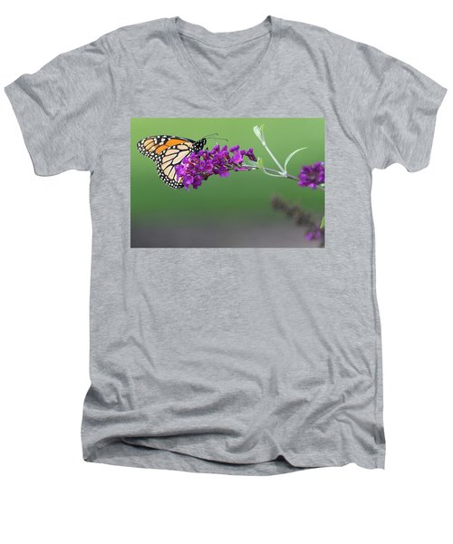 Little Wing Men's V-Neck T-Shirt by Angelo Marcialis