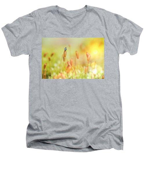 Little World Men's V-Neck T-Shirt
