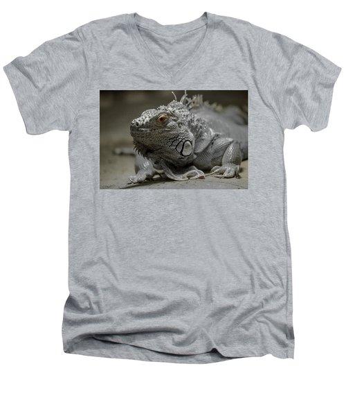 Liz Men's V-Neck T-Shirt