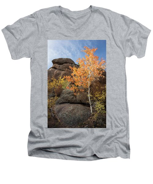 Lone Aspen Men's V-Neck T-Shirt