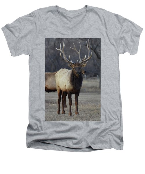 Men's V-Neck T-Shirt featuring the photograph Lone Bull by Billie Colson