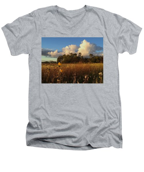 Lone Flower Men's V-Neck T-Shirt