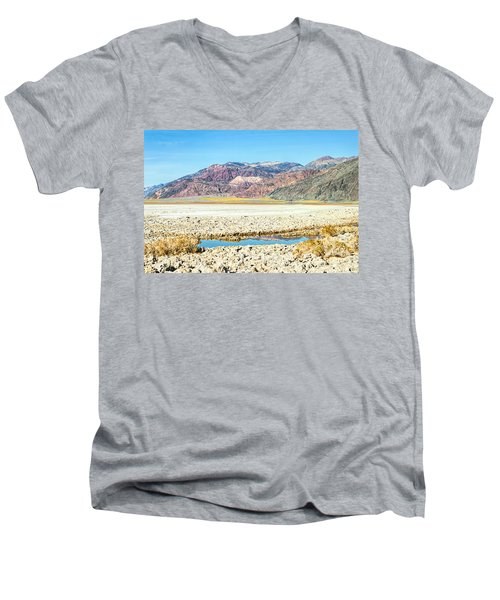 Lone Pool Men's V-Neck T-Shirt