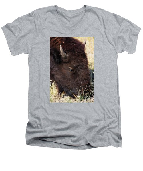 Lonely Bison Men's V-Neck T-Shirt by Janie Johnson