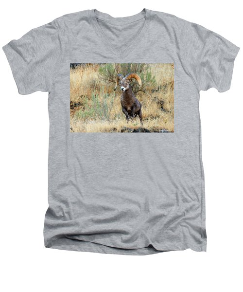 Loner IIi Men's V-Neck T-Shirt