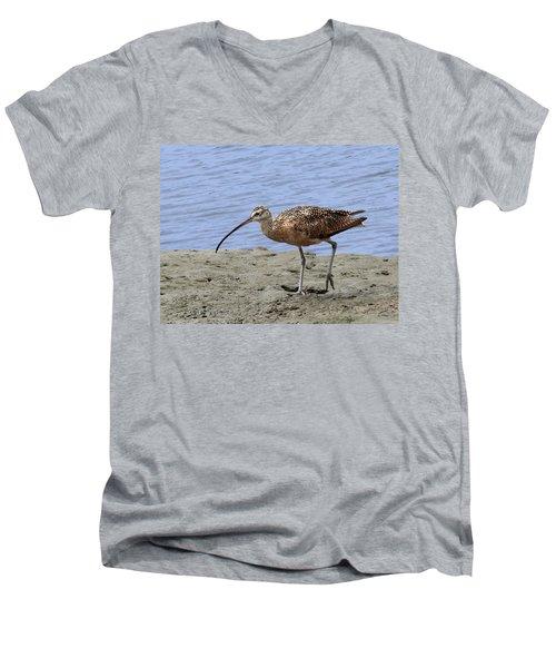 Long-billed Curlew Men's V-Neck T-Shirt