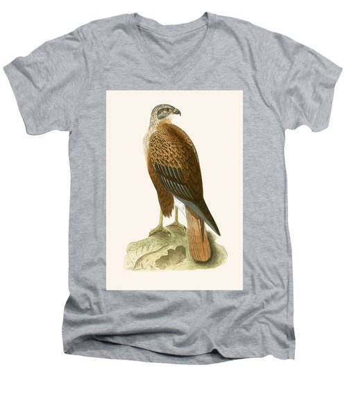 Long Legged Buzzard Men's V-Neck T-Shirt by English School
