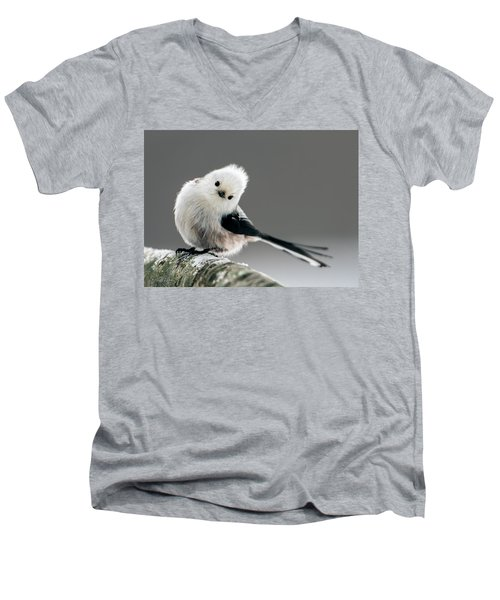 Charming Long-tailed Look Men's V-Neck T-Shirt