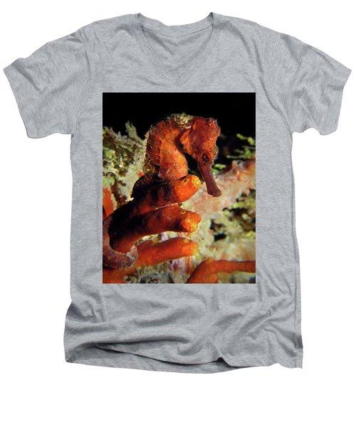 Longsnout Seahorse, St. Croix, U.s. Virgin Islands 2 Men's V-Neck T-Shirt