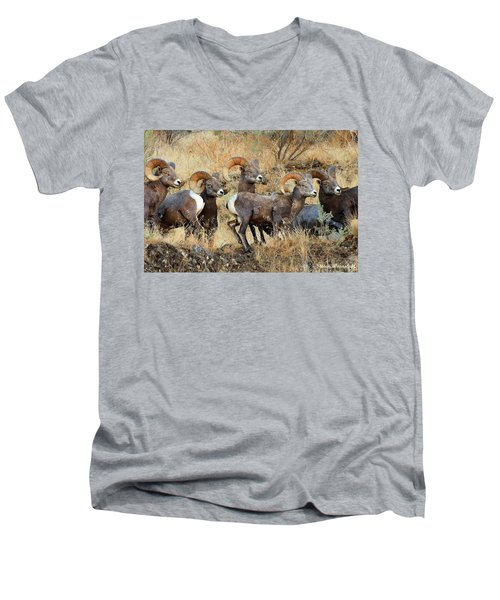 Look At That Men's V-Neck T-Shirt by Steve Warnstaff