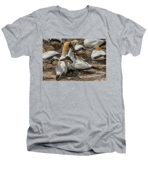 Men's V-Neck T-Shirt featuring the photograph Look What I've Brought For You by Werner Padarin
