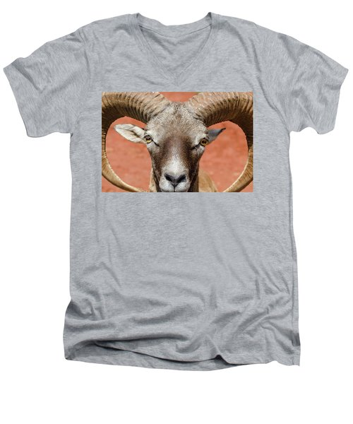 Looking At You Men's V-Neck T-Shirt