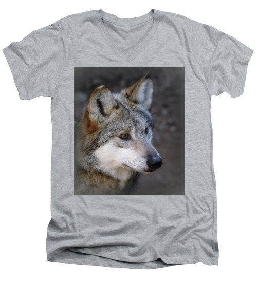Looking Onward Men's V-Neck T-Shirt