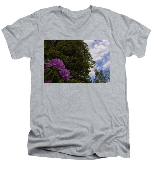 Looking To The Sky Men's V-Neck T-Shirt