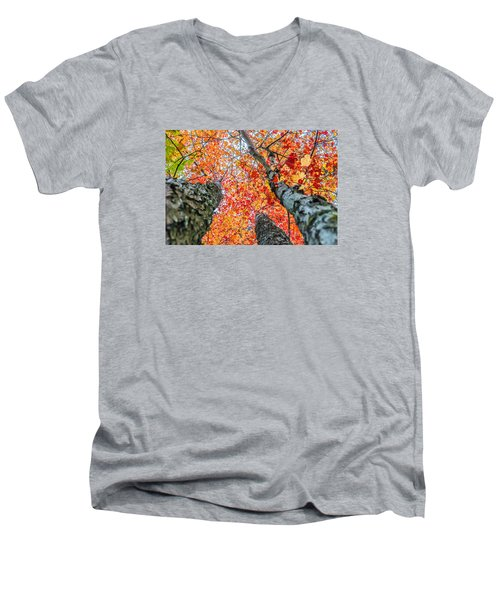 Looking Up - 9743 Men's V-Neck T-Shirt