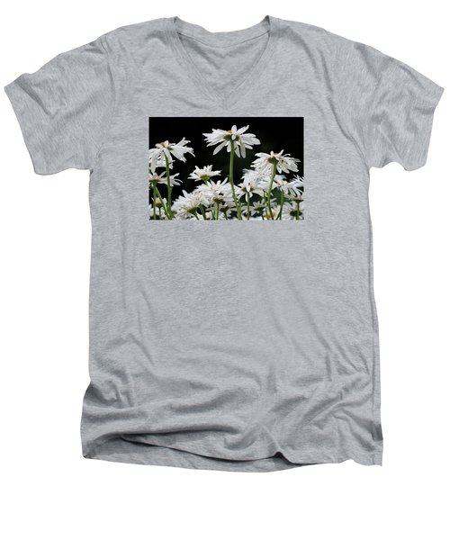 Looking Up At At Daisies Men's V-Neck T-Shirt by Dorothy Cunningham
