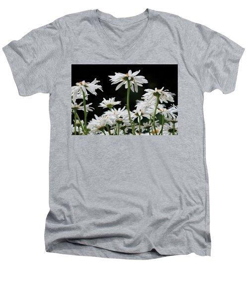 Looking Up At At Daisies Men's V-Neck T-Shirt