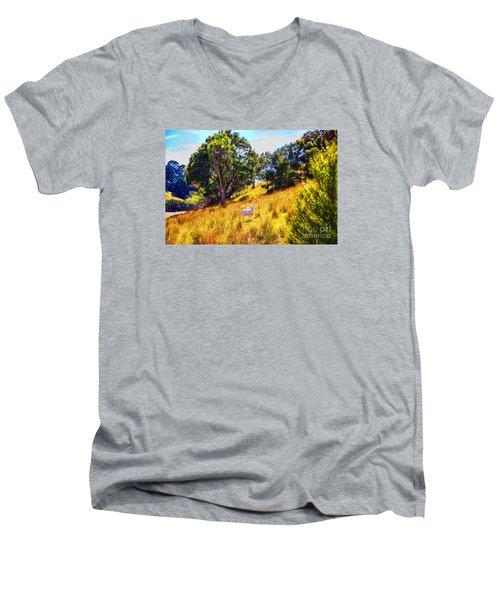 Lost Lamb Men's V-Neck T-Shirt by Rick Bragan