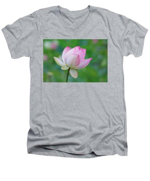 Lotus Bloom Men's V-Neck T-Shirt