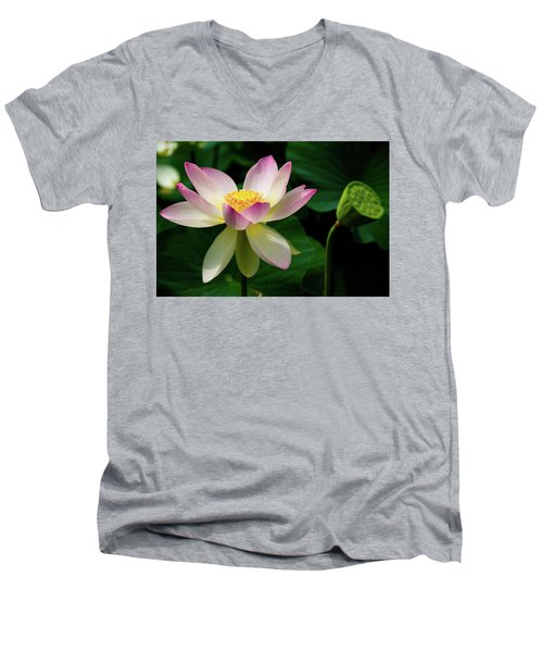 Lotus Lily In Its Final Days Men's V-Neck T-Shirt