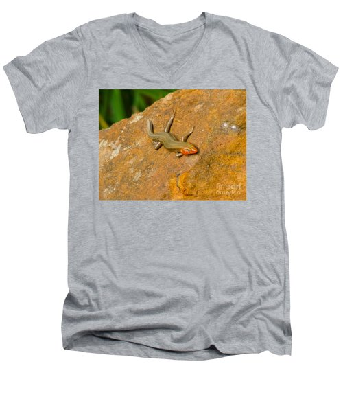 Men's V-Neck T-Shirt featuring the photograph Lounging Lizard by Rand Herron