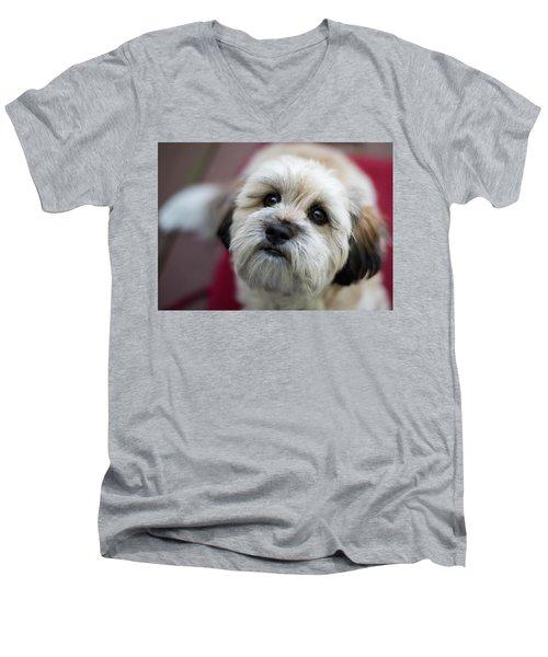 Lucy 2 Men's V-Neck T-Shirt