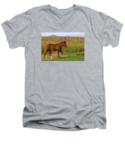 Lunch Break Men's V-Neck T-Shirt