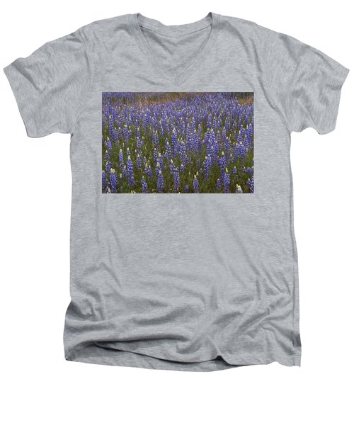 Men's V-Neck T-Shirt featuring the photograph Lupines by Doug Herr