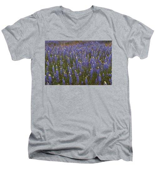 Lupines Men's V-Neck T-Shirt