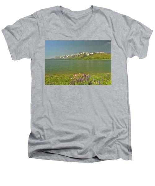 Lupines In The Tetons Men's V-Neck T-Shirt