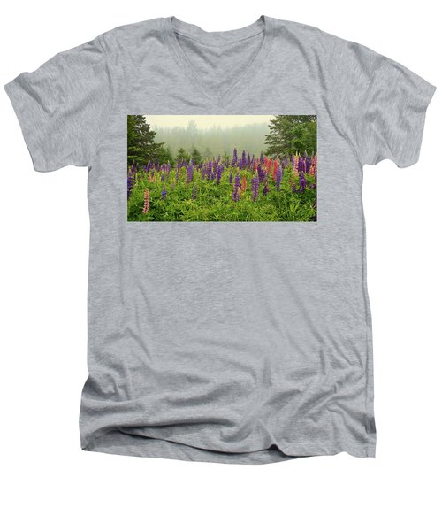 Lupins In The Mist Men's V-Neck T-Shirt