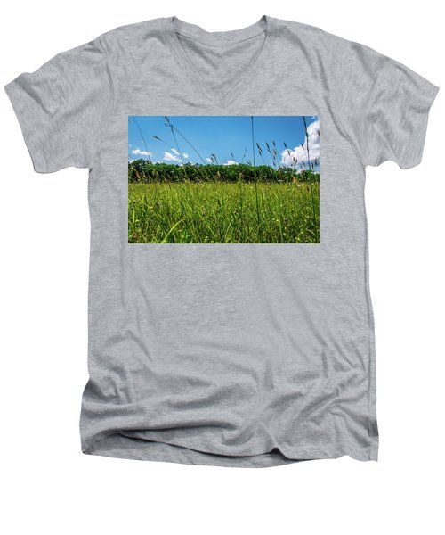 Lying In The Grass Men's V-Neck T-Shirt