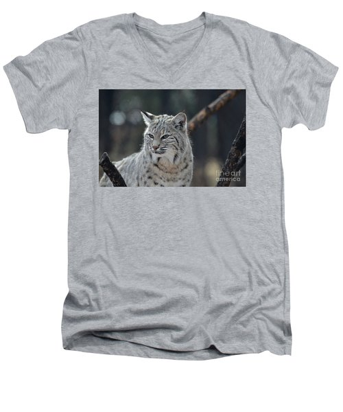 Lynx With A Very Unhappy Face Men's V-Neck T-Shirt by DejaVu Designs