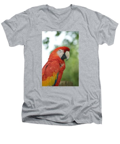 Men's V-Neck T-Shirt featuring the photograph Macraw by Heidi Poulin