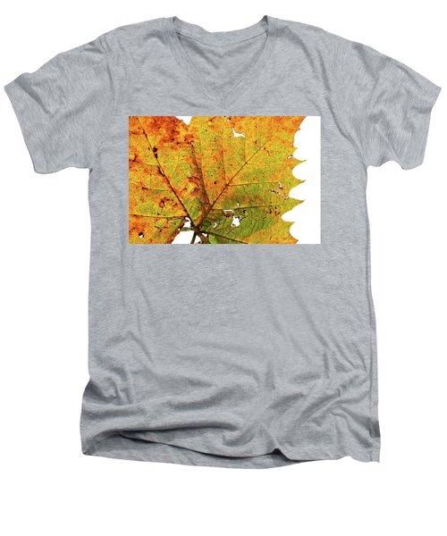 Macro Autum Men's V-Neck T-Shirt